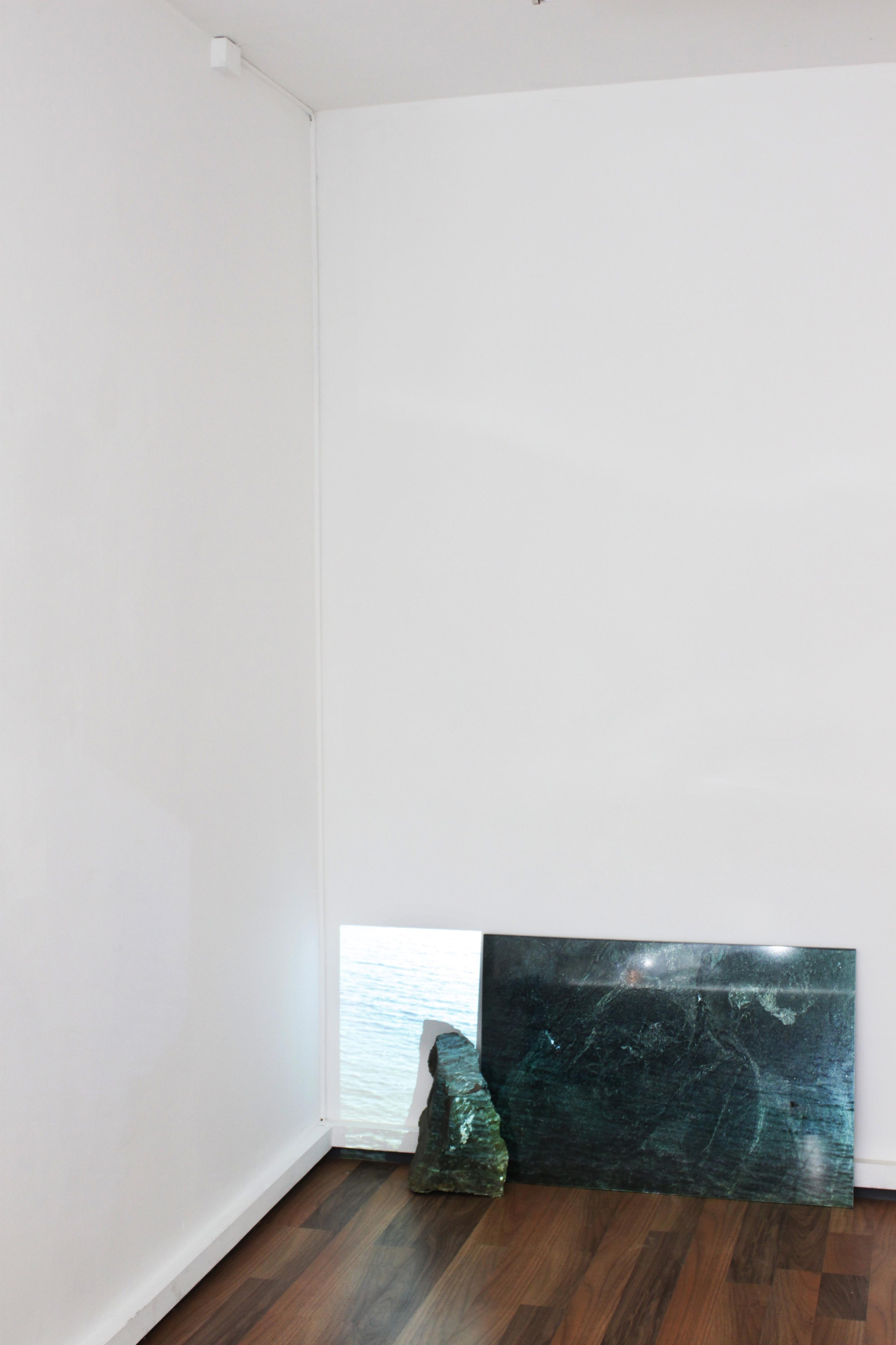 Jardin Sec Urgent Paradise Gallery Lausanne 2014 Assi Joseph