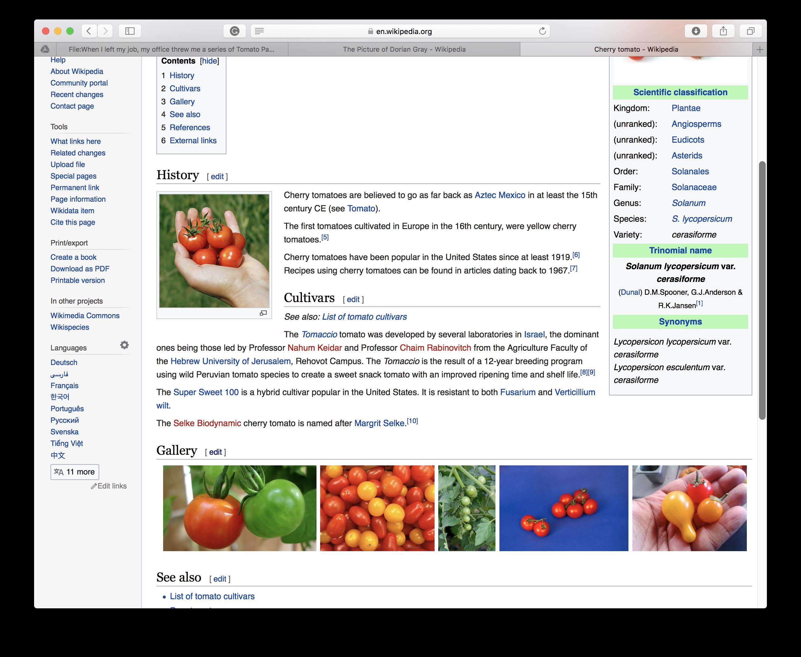 Wikipedia Still Lifes - Olivia de Salve