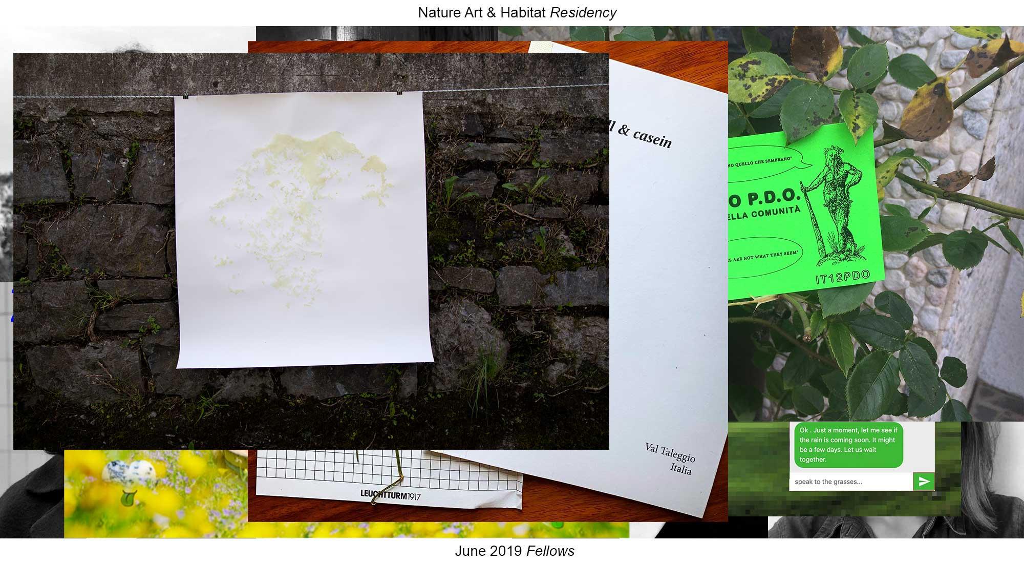 Forma E Colori Treviglio fellows / residenti - nahr