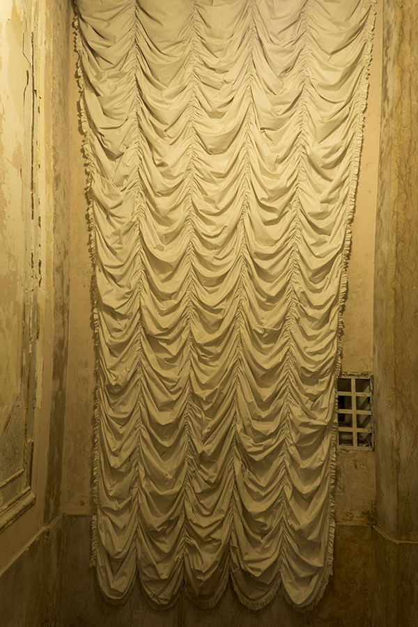 carina martins, a passing view - cortinado dourado