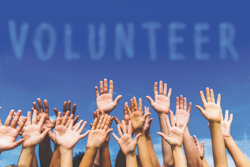 Volunteer/Intern - The Scheherazade Project