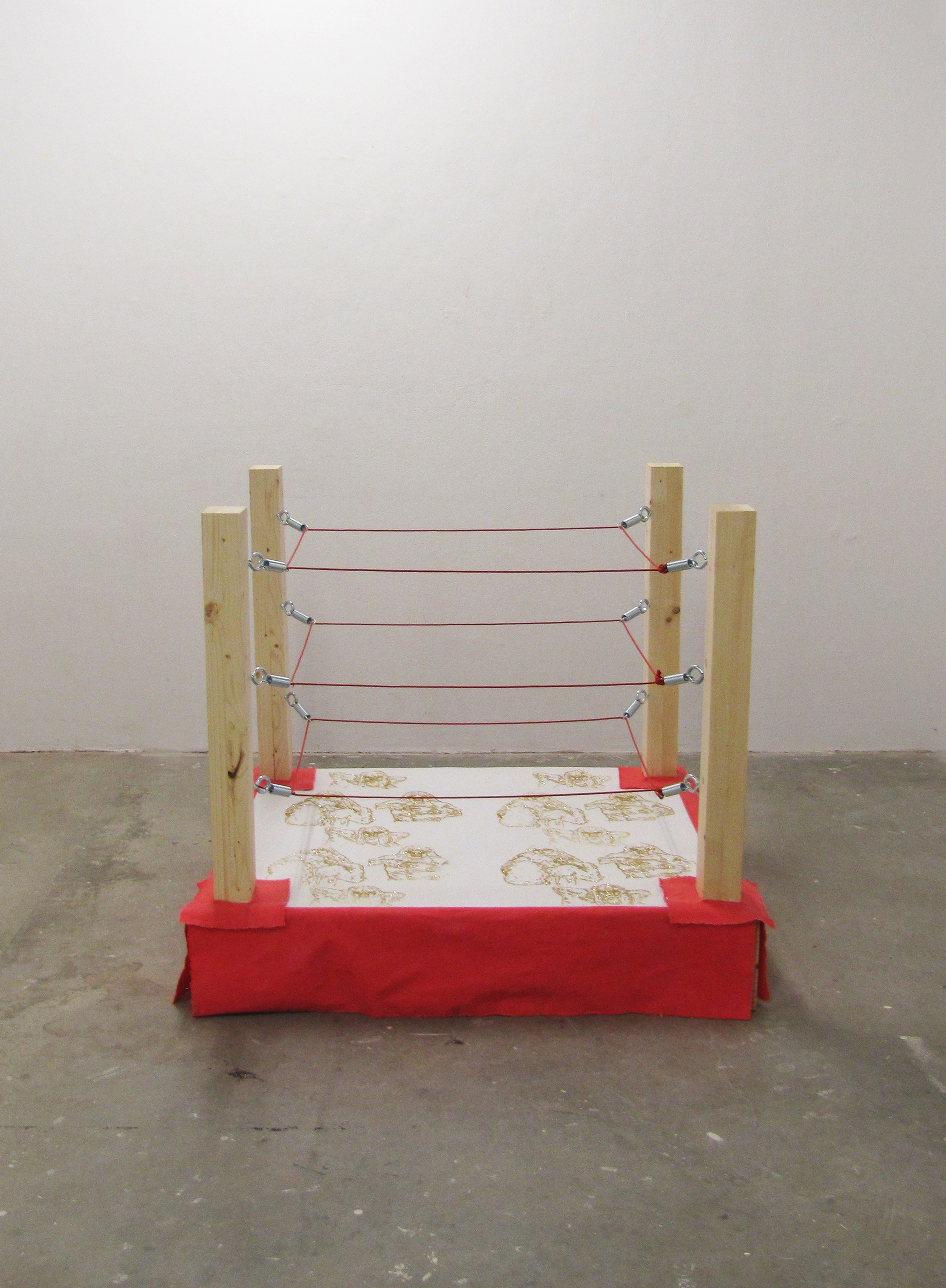 BABY'S FIRST WRESTLING RING - rachel mcgovern