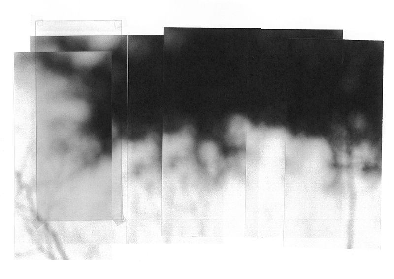 carina martins, snips of a winter sky -  fragments of a tree