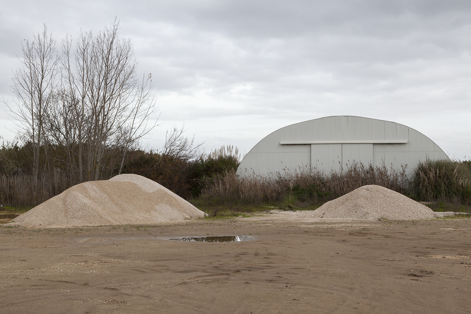 carina martins, untitled - sand heaps trees and warehouse in a winter landscape