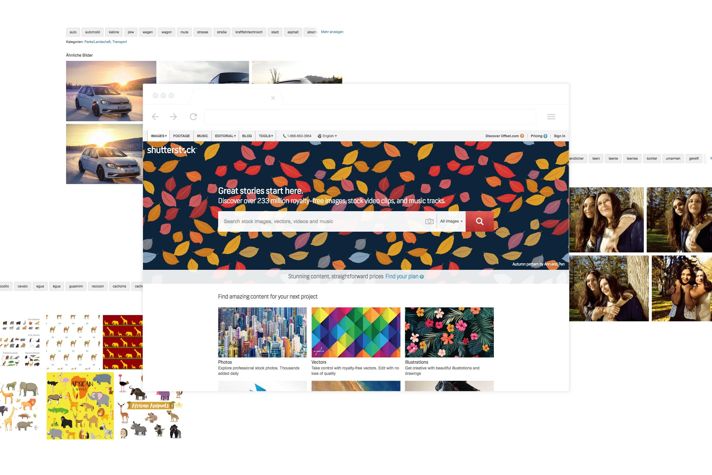 69baa65a8a Shutterstock - Company Cue