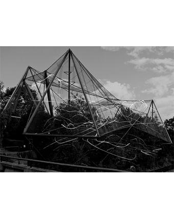 posthuman architecture collage