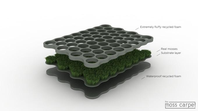 Moss Carpet Nection Design