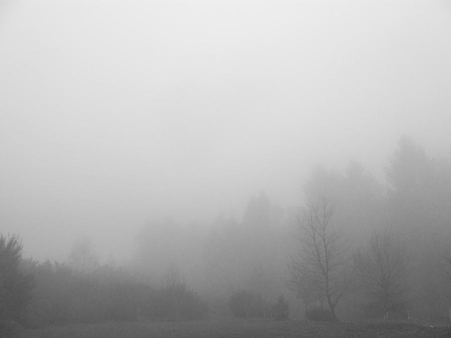 carina martins, the third season - foggy landscape