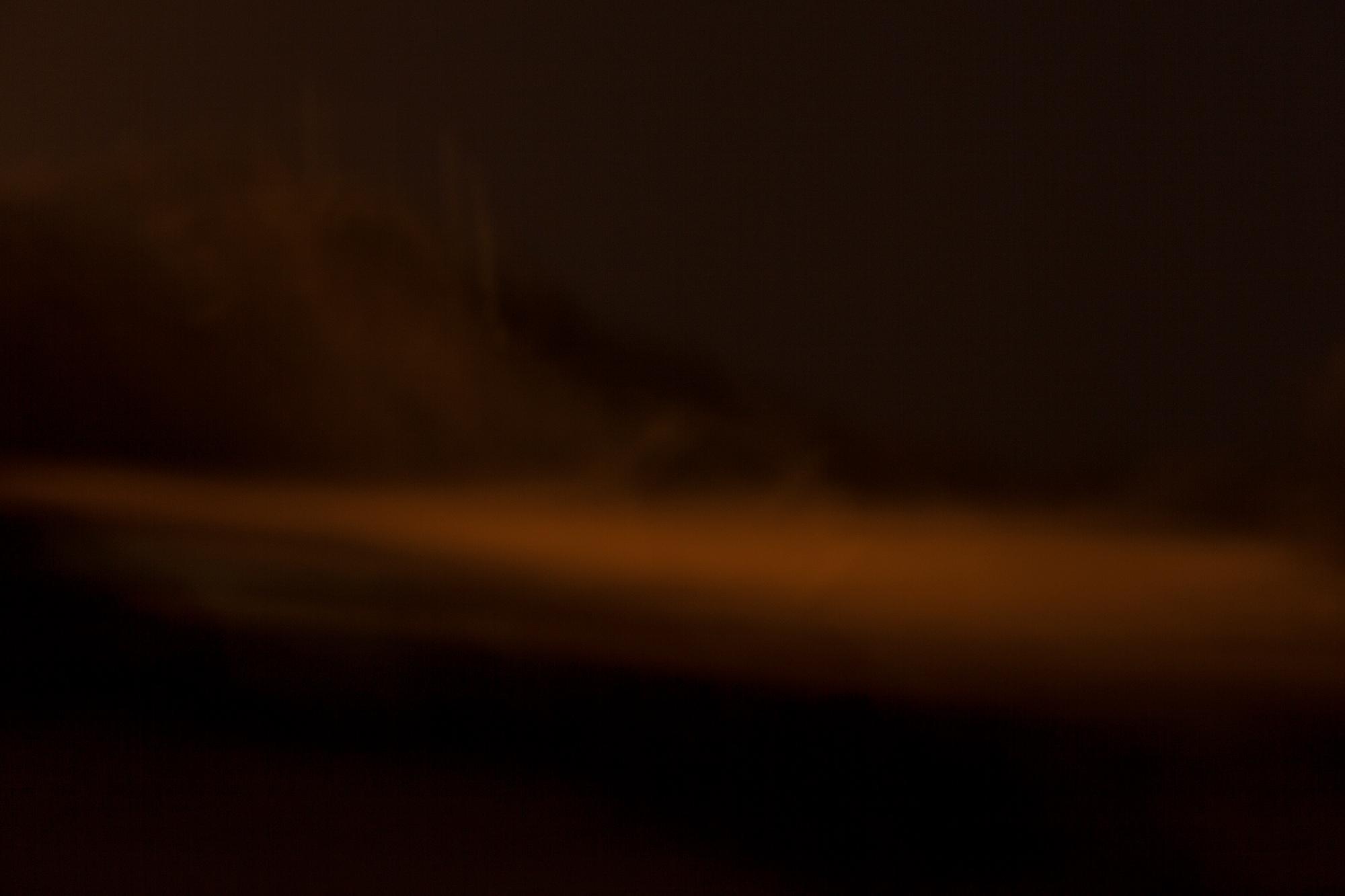 carina martins, vagueamos na noite sem sentido e somos devorados pelo fogo - arvore a noite