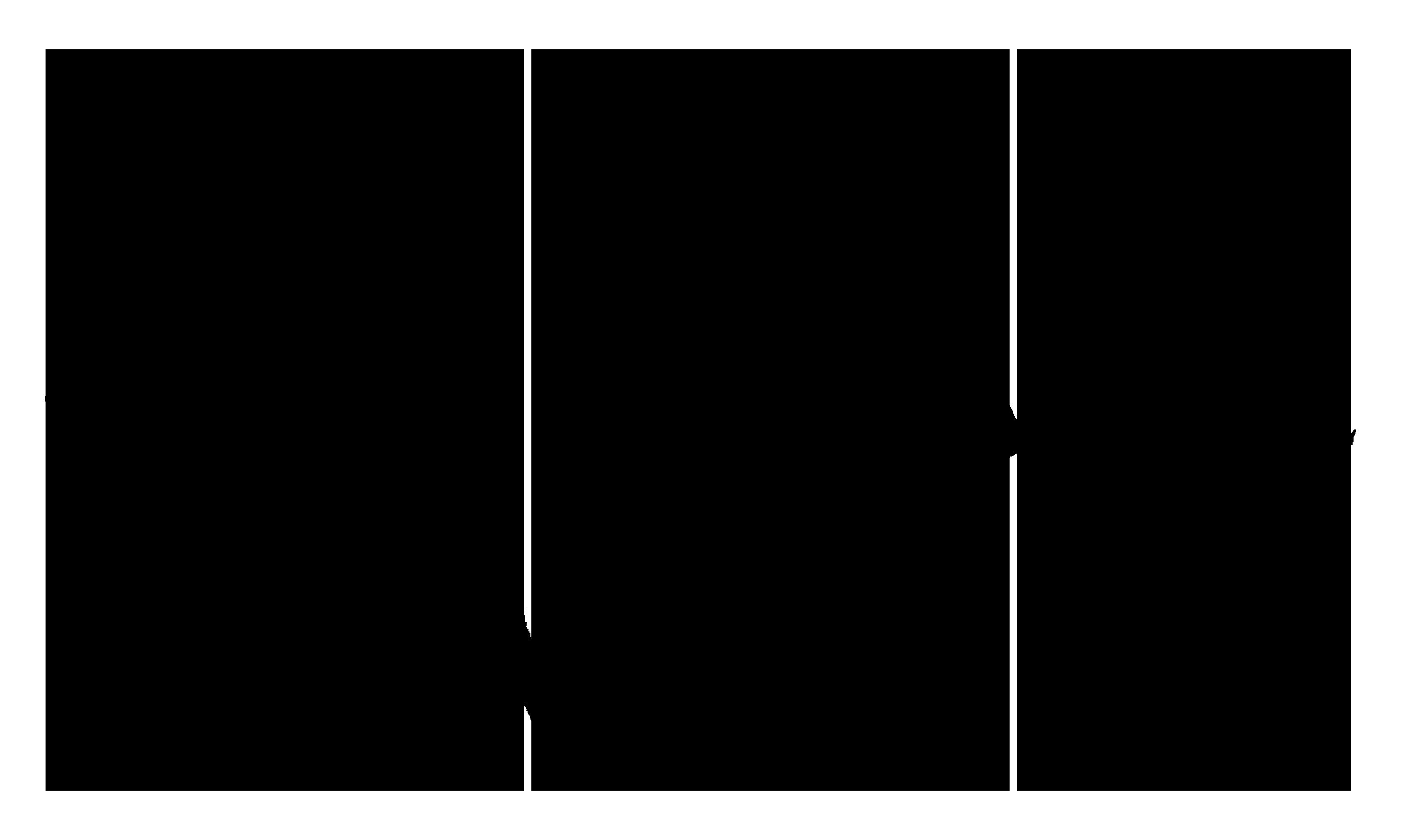 CONTACT - saddo ro
