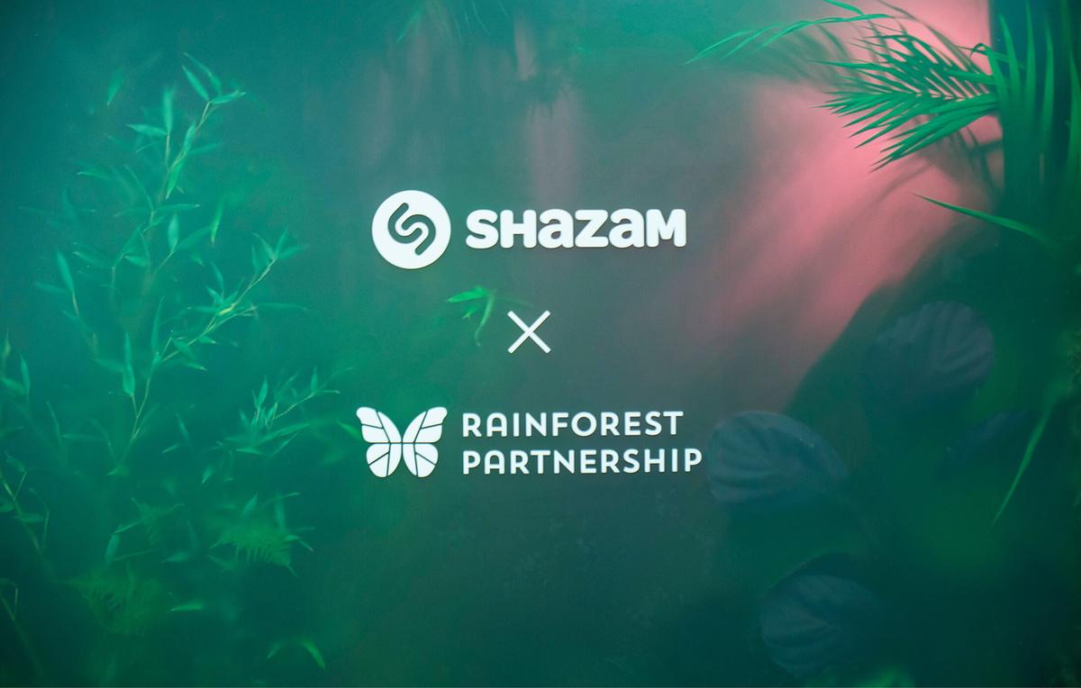 Shazam Rainforest — Brand Experience - nettapeltola com